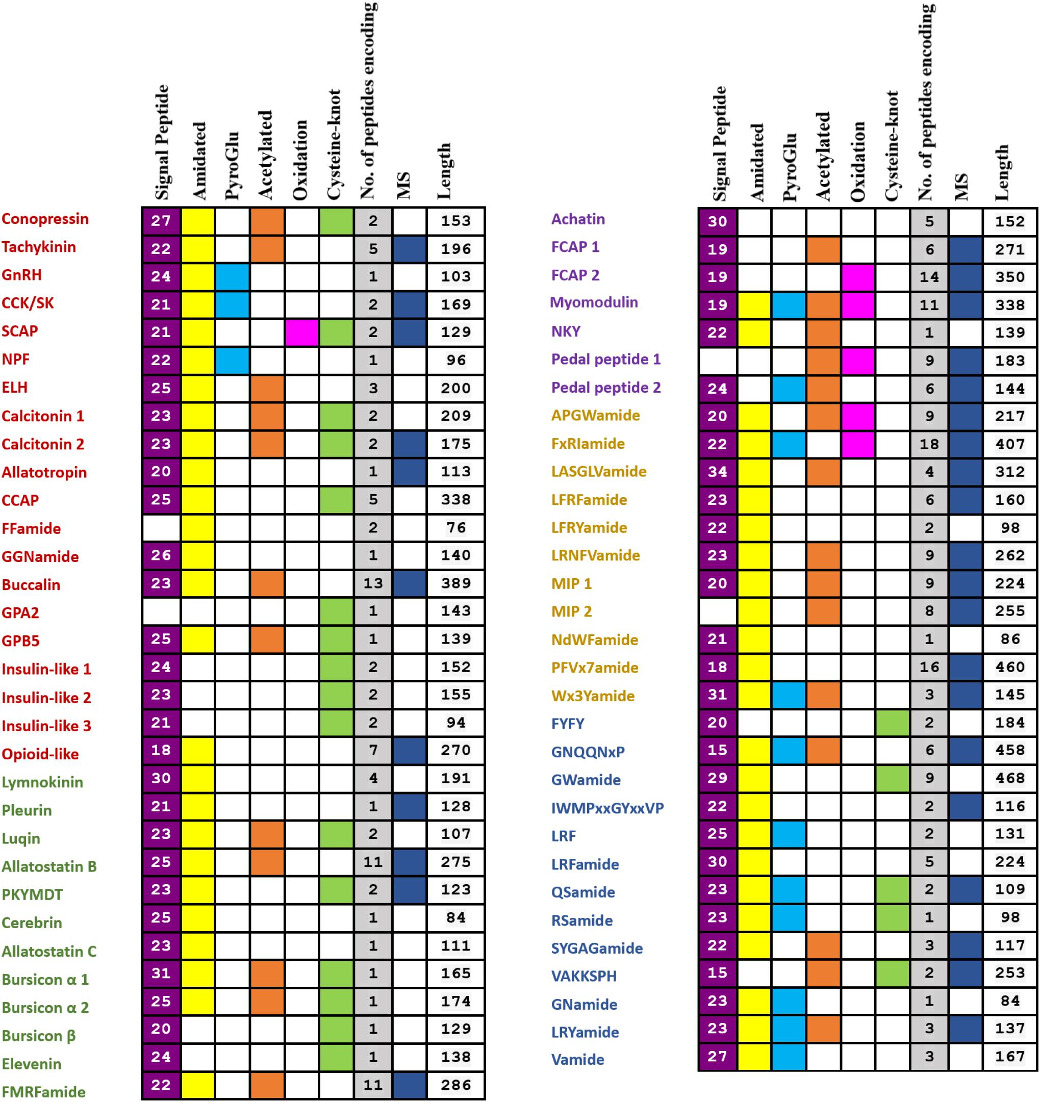 The Importance Of Identified Neurons In Gastropod Molluscs To >> Frontiers Identification And Characterization Of Neuropeptides By