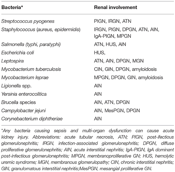 Frontiers Infection Induced Kidney Diseases Medicine