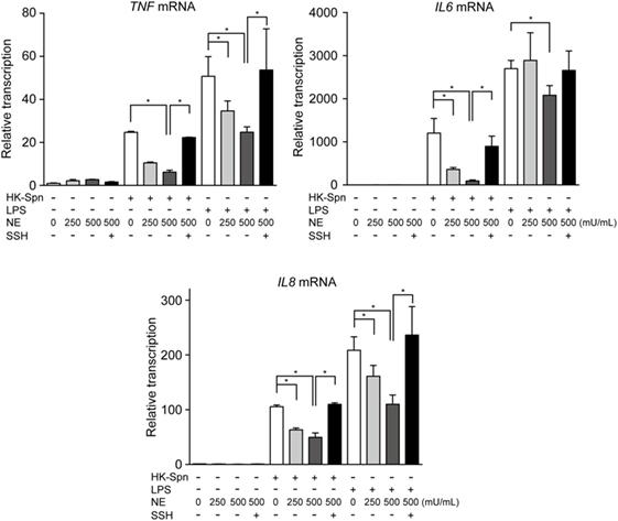 Frontiers | Neutrophil Elastase Subverts the Immune Response