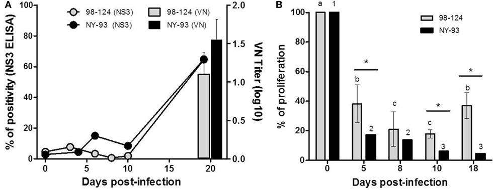 Frontiers | In Vitro and In Vivo Characterization of a Typical and a