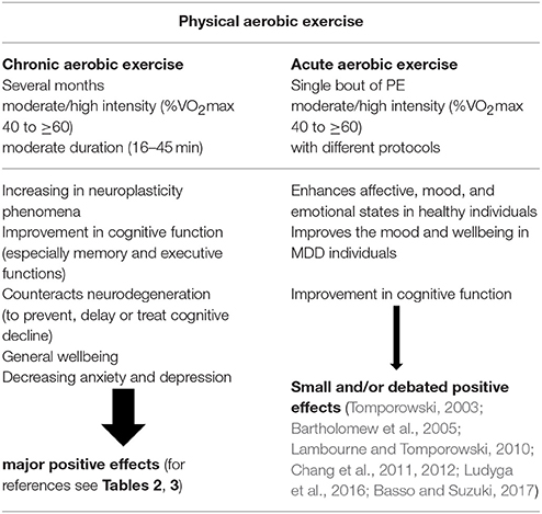 Frontiers | Effects of Physical Exercise on Cognitive Functioning