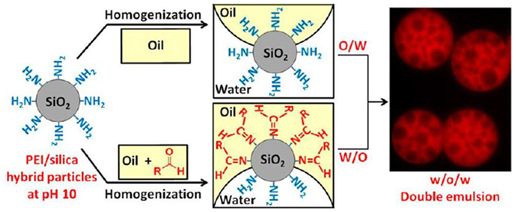 Frontiers | Tailoring the Wettability of Colloidal Particles