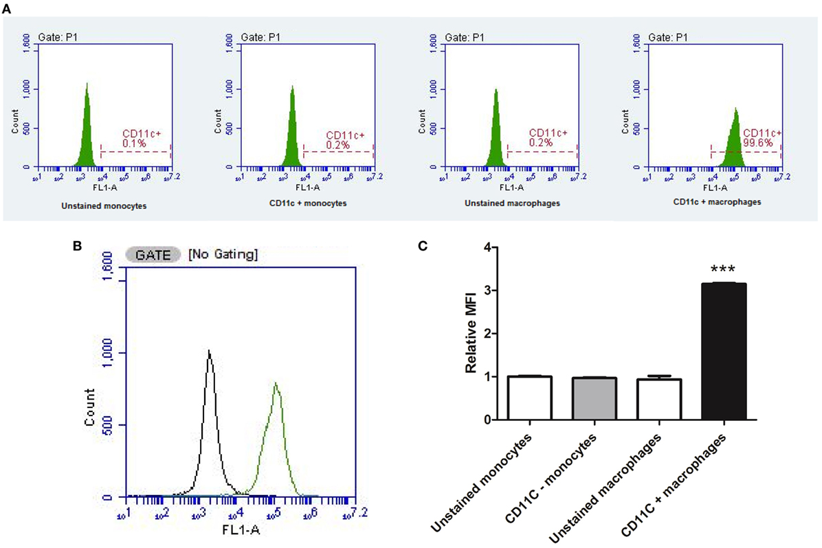 Frontiers The Effect Of C Reactive Protein Isoforms On Nitric Process Flow Diagram Acid