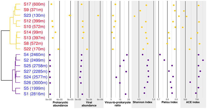 Frontiers | Water Masses and Depth Structure Prokaryotic and