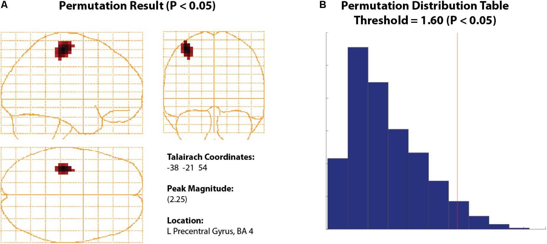 Frontiers | BrainWave: A Matlab Toolbox for Beamformer Source