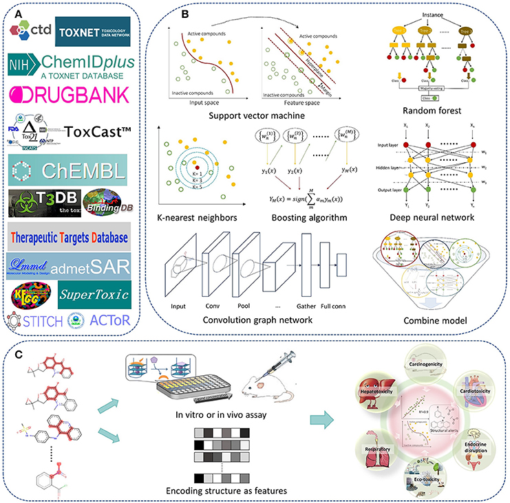 Frontiers in silico prediction of chemical toxicity for drug frontiersin fandeluxe Choice Image