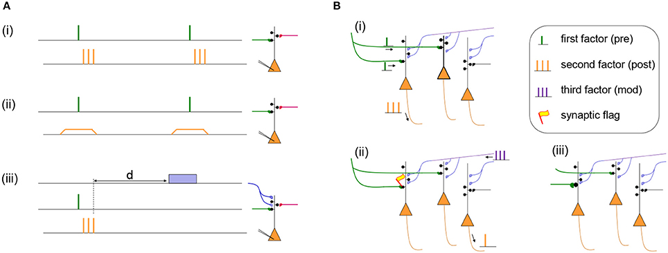 Neco Encoder Wiring Diagram on