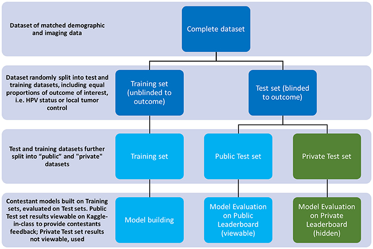 Frontiers | Machine Learning Applications in Head and Neck