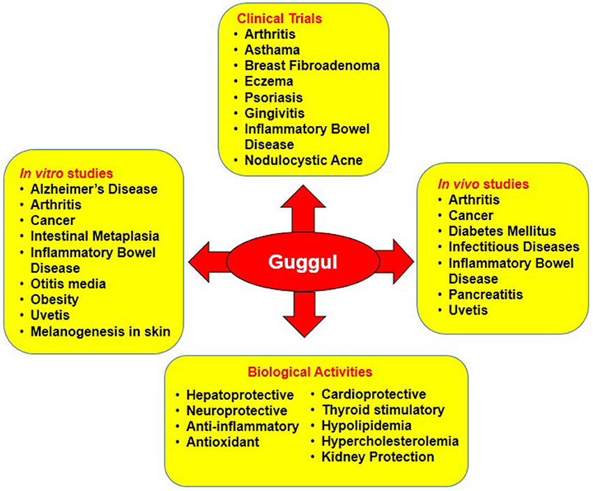 Frontiers | Googling the Guggul (Commiphora and Boswellia