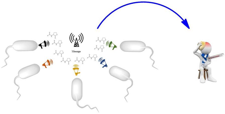 Figure 3 - Communication among bacteria.