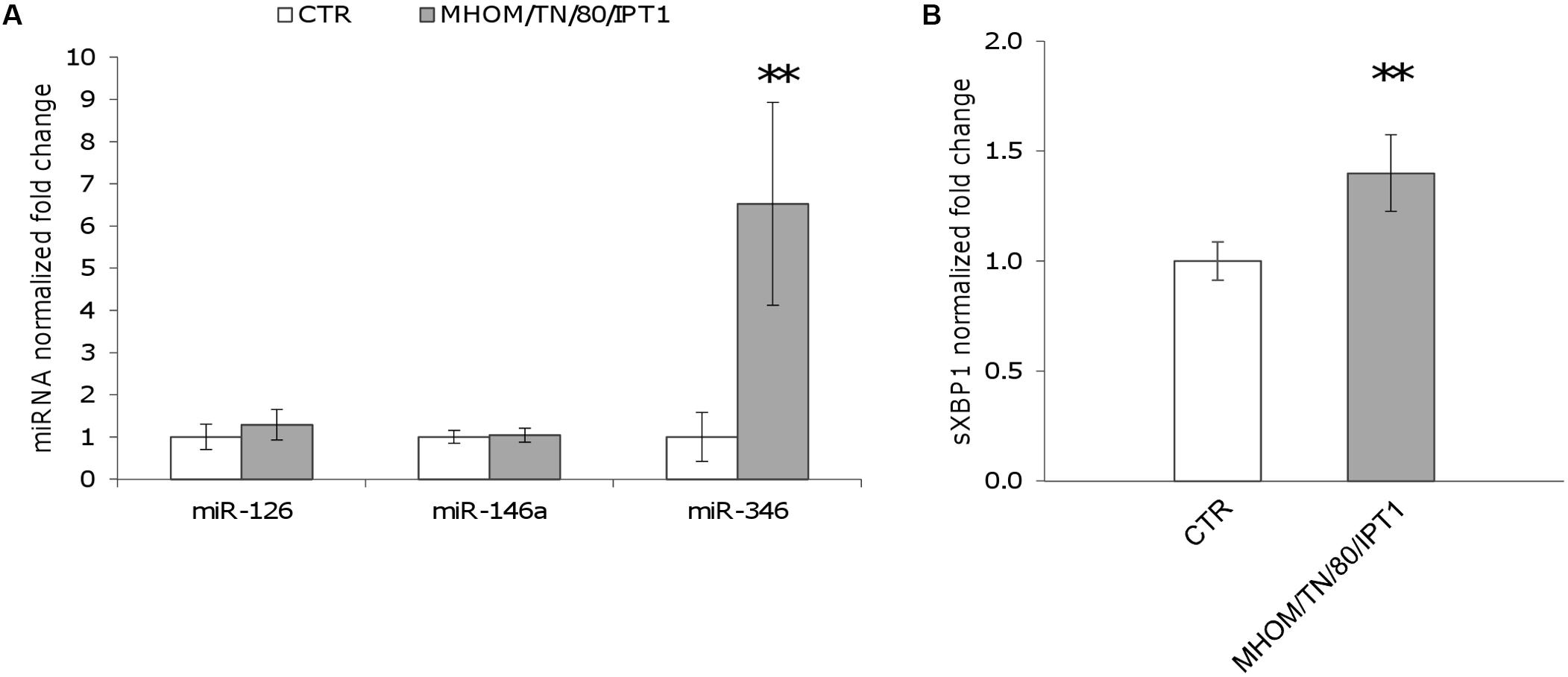 Frontiers Leishmania Infection Induces Microrna Hsa Mir 346 In Nuno Bettencourt Wiring Diagram