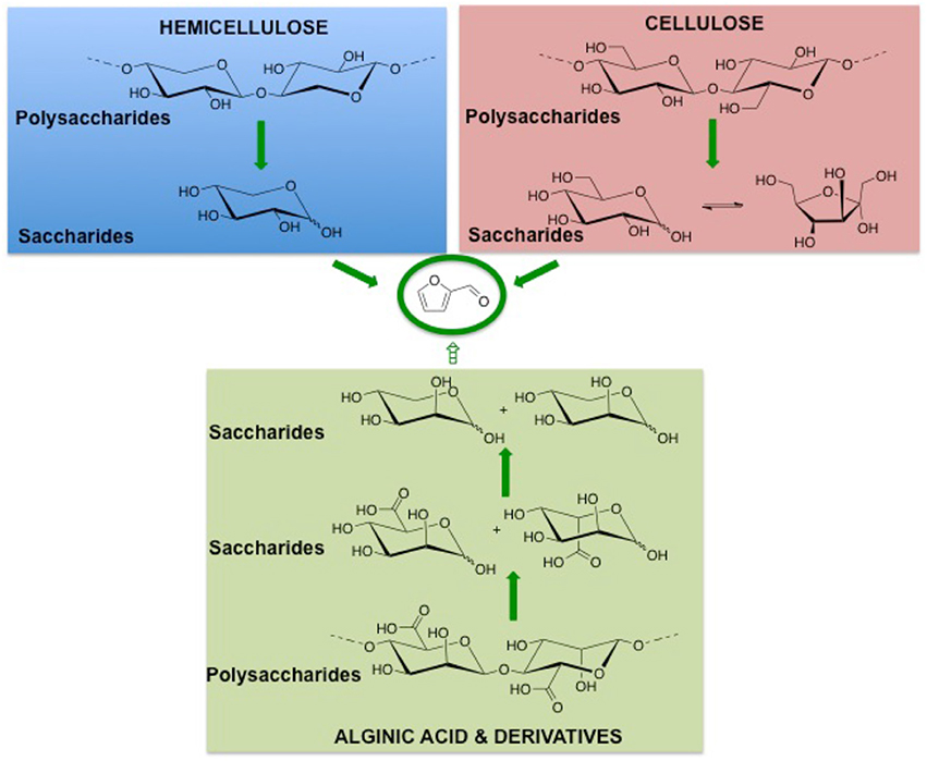 Xylose To Furfural Frontiers | Hydrolysis...