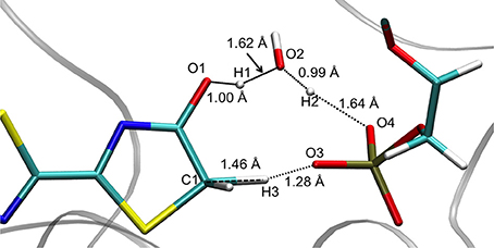 Frontiers | Modeling Chemical Reactions by QM/MM Calculations: The