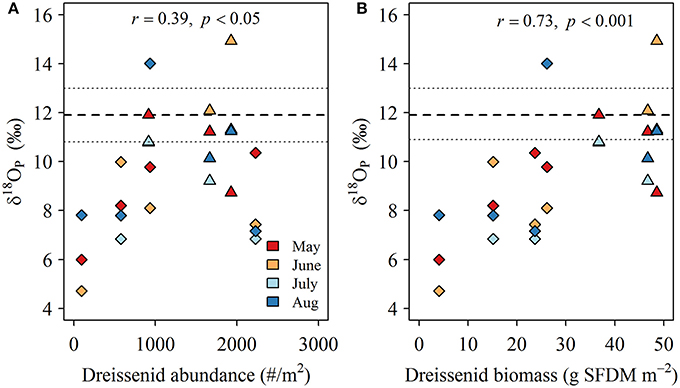 Frontiers   Phosphorus Dynamics and Availability in the