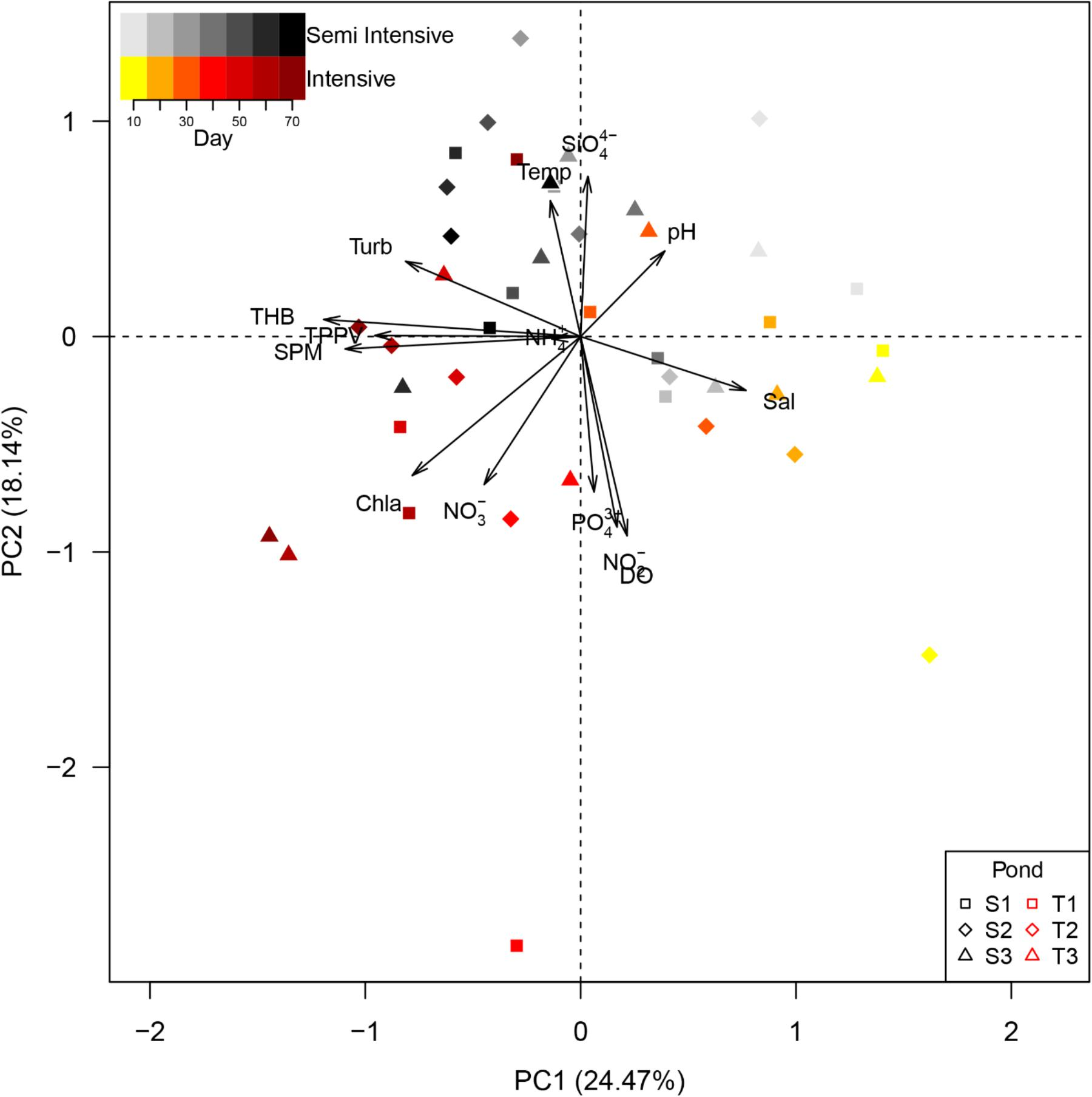 Frontiers | Bacterial Abundance and Community Composition in