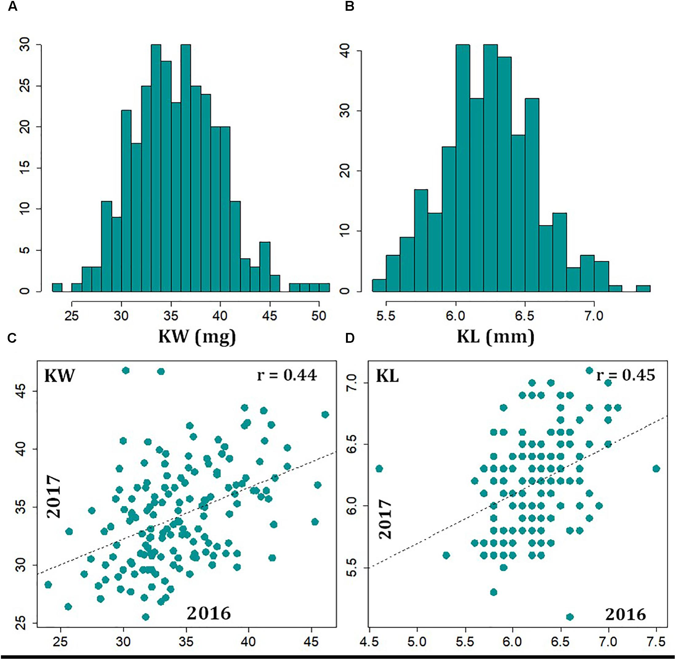 Frontiers | Genome-Wide Association Studies to Identify Loci and ...