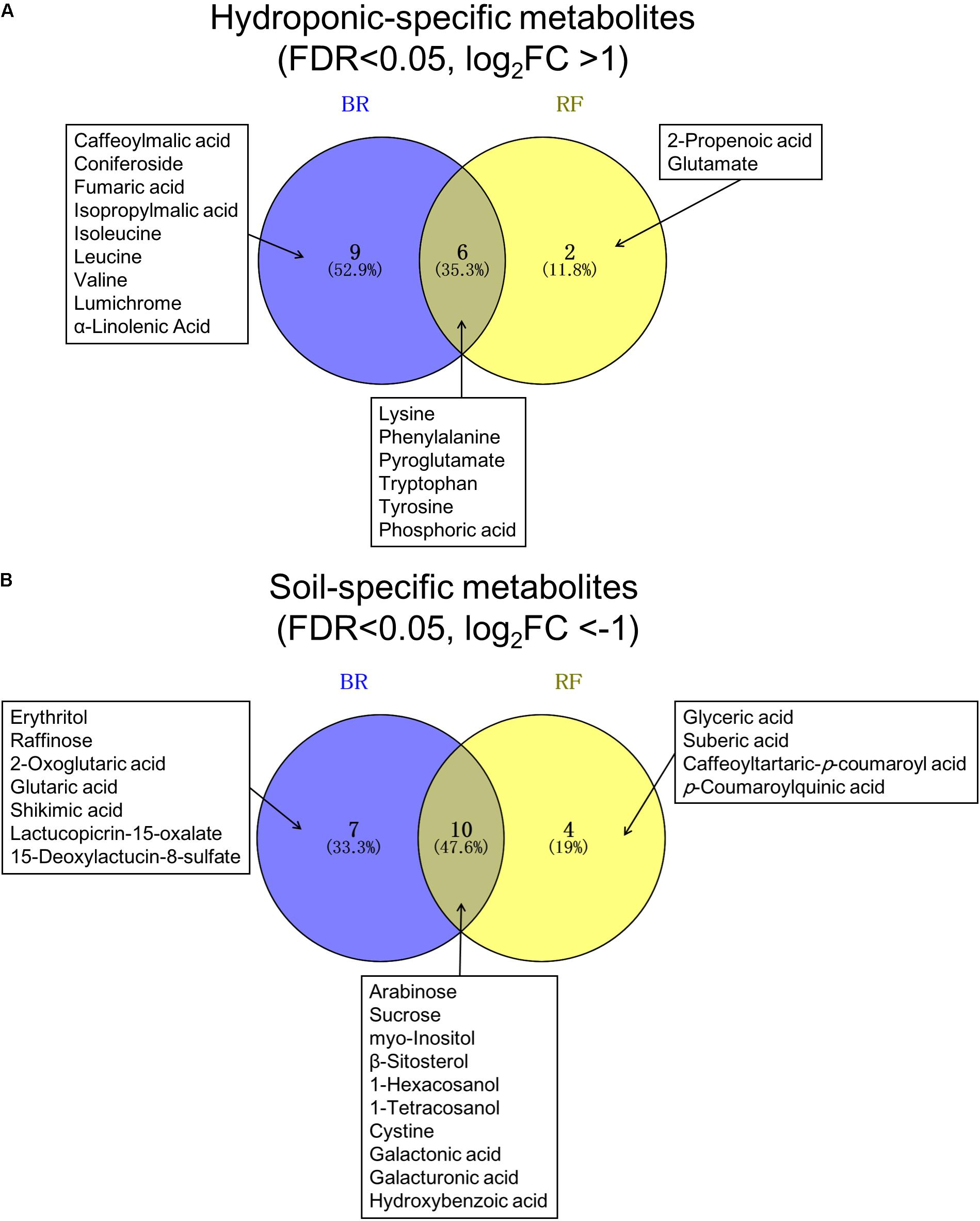 Frontiers Metabolomic Evaluation Of The Quality Leaf Lettuce Bean Seed Germination Diagram 9 3 1 Draw And Label A