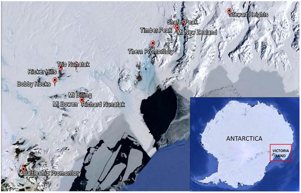 Frontiers   Antarctic Cryptoendolithic Fungal Communities
