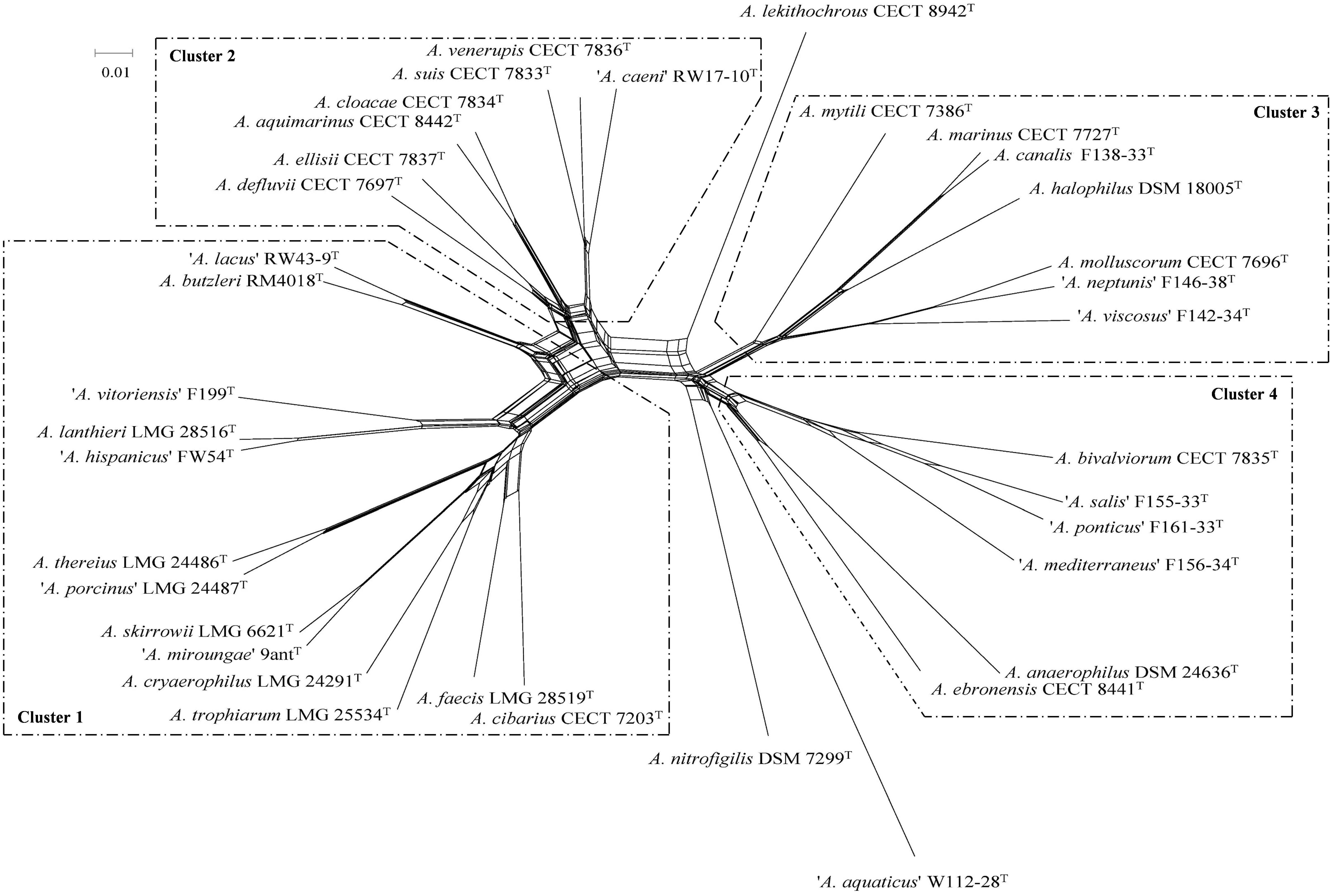 Frontiers | Revisiting the Taxonomy of the Genus Arcobacter: Getting