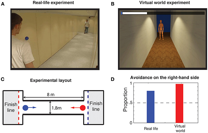 Frontiers | Virtual Sensing and Virtual Reality: How New