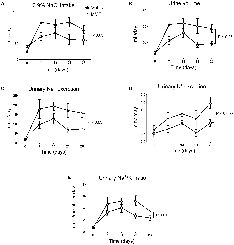 Frontiers Mycophenolate Mofetil Attenuates Doca Salt Hypertension 302 188 Wiring Diagram