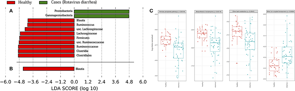 Frontiers | Time Series Analysis of the Microbiota of