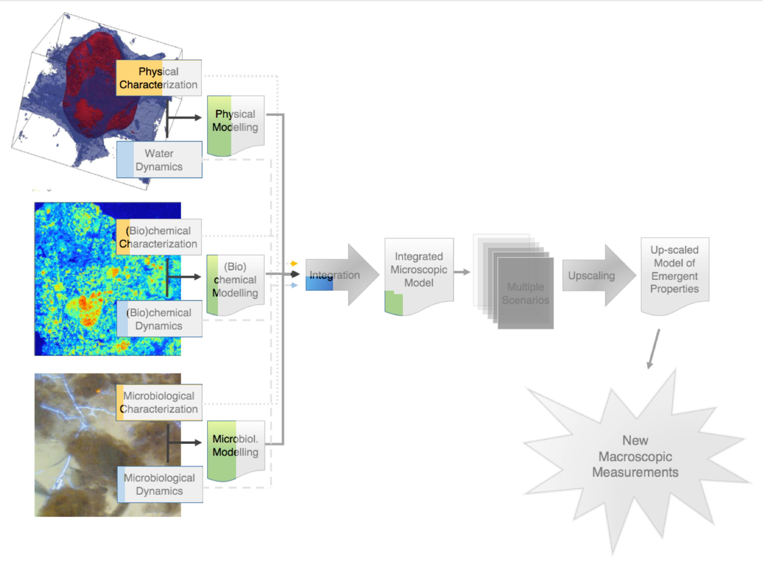 Frontiers Emergent Properties Of Microbial Activity In Problem 409 Shear And Moment Diagrams Strength Materials Review