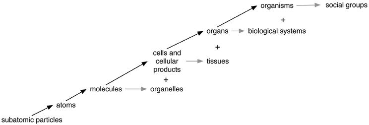 higher human biology 2012 essay questions
