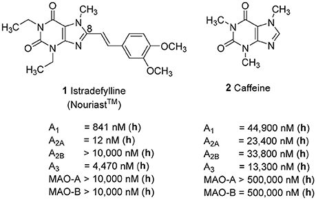Frontiers | Probing Substituents in the 1- and 3-Position