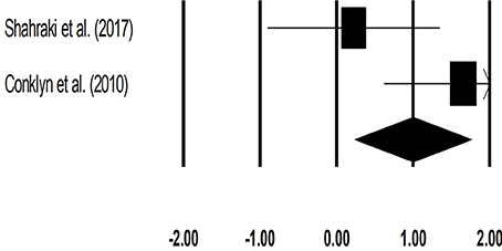 Frontiers | Effects of Rhythmic Auditory Cueing in Gait