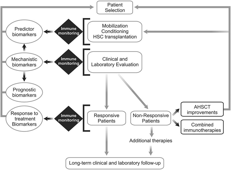 Frontiers | Autologous Hematopoietic Stem Cell Transplantation for