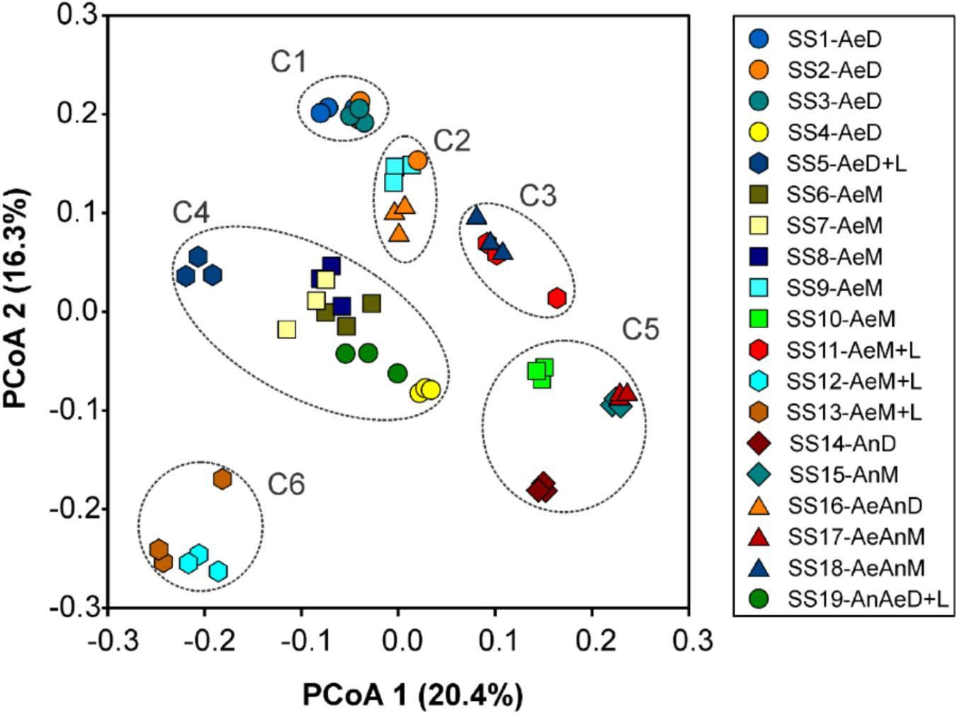 Frontiers | Sewage Sludge Microbial Structures and Relations