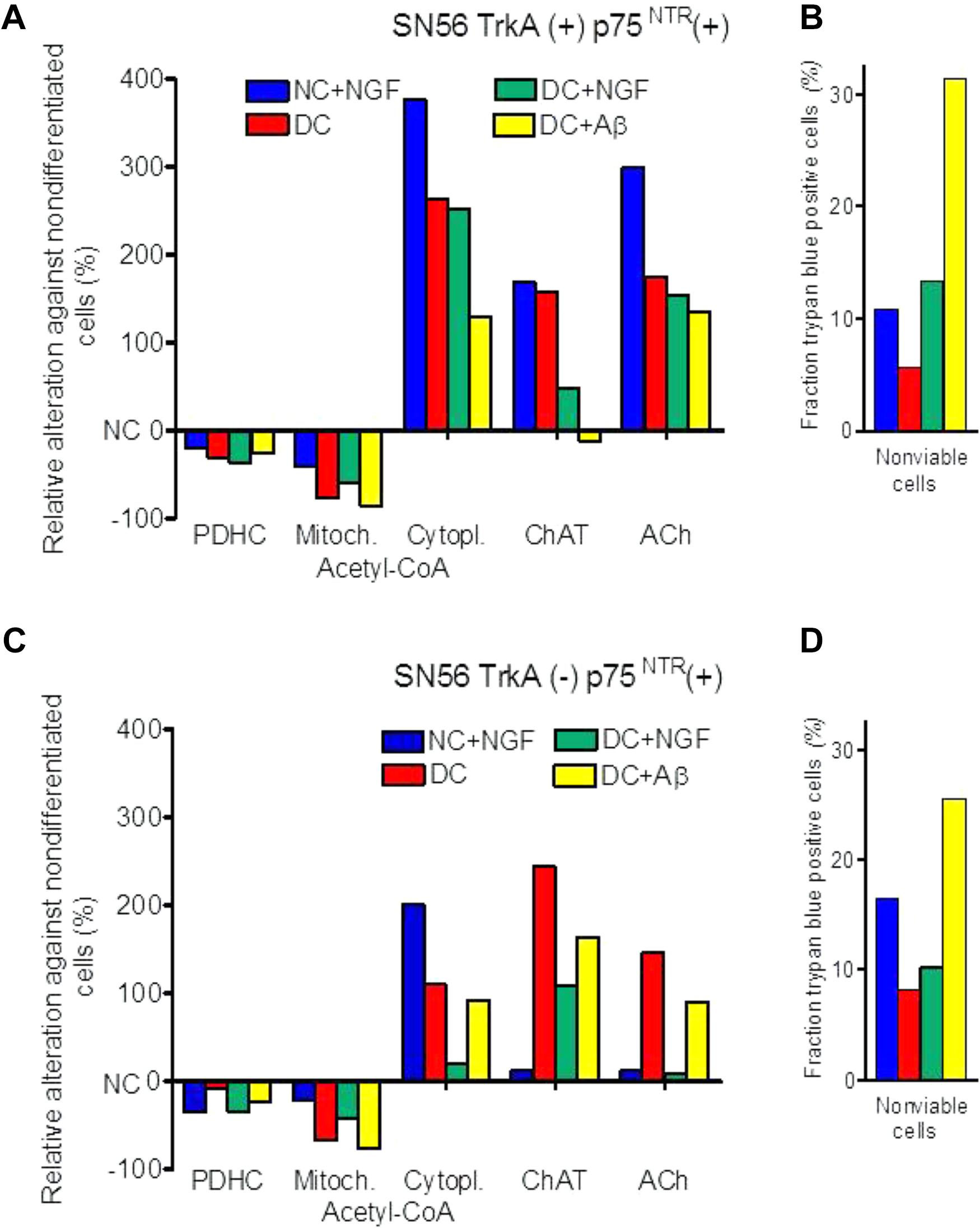 Frontiers | The Regulatory Effects of Acetyl-CoA Distribution in the