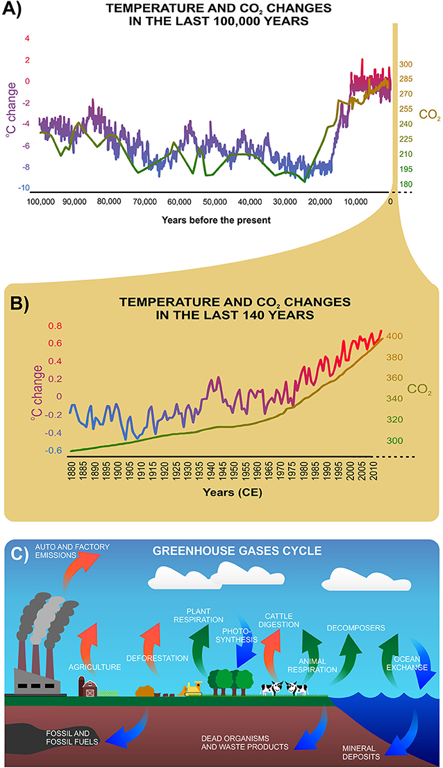 Figure 1 - (A) The changes in average temperature and CO2 levels over the last 100,000 years.