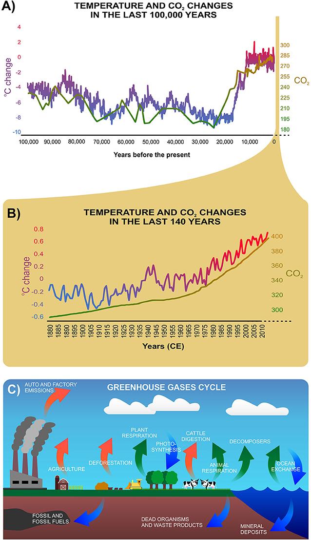 איור 1 - (A) השינויים בטמפרטורה הממוצעת וברמות ה-CO2 במהלך 100,000 השנים האחרונות.