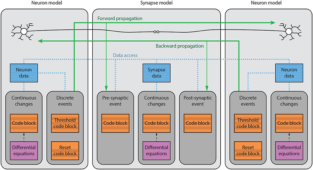 Frontiers | Code Generation in Computational Neuroscience: A