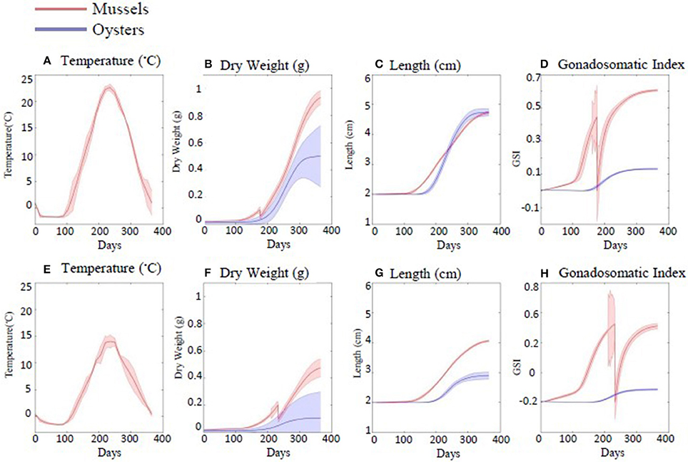Frontiers | Past, Present, and Future: Performance of Two Bivalve