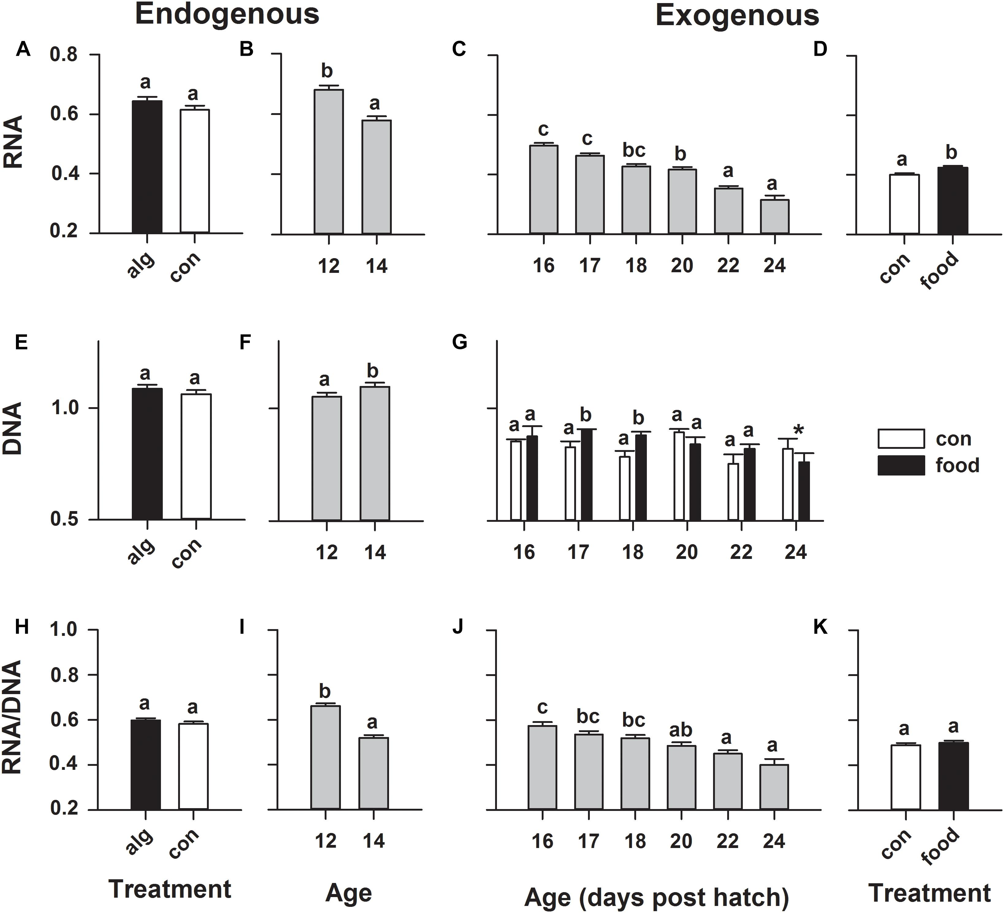 Frontiers | Molecular Ontogeny of First-Feeding European Eel