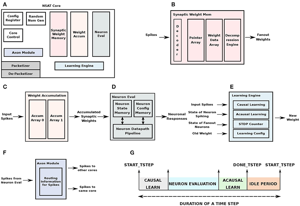 Frontiers | Neural and Synaptic Array Transceiver: A Brain