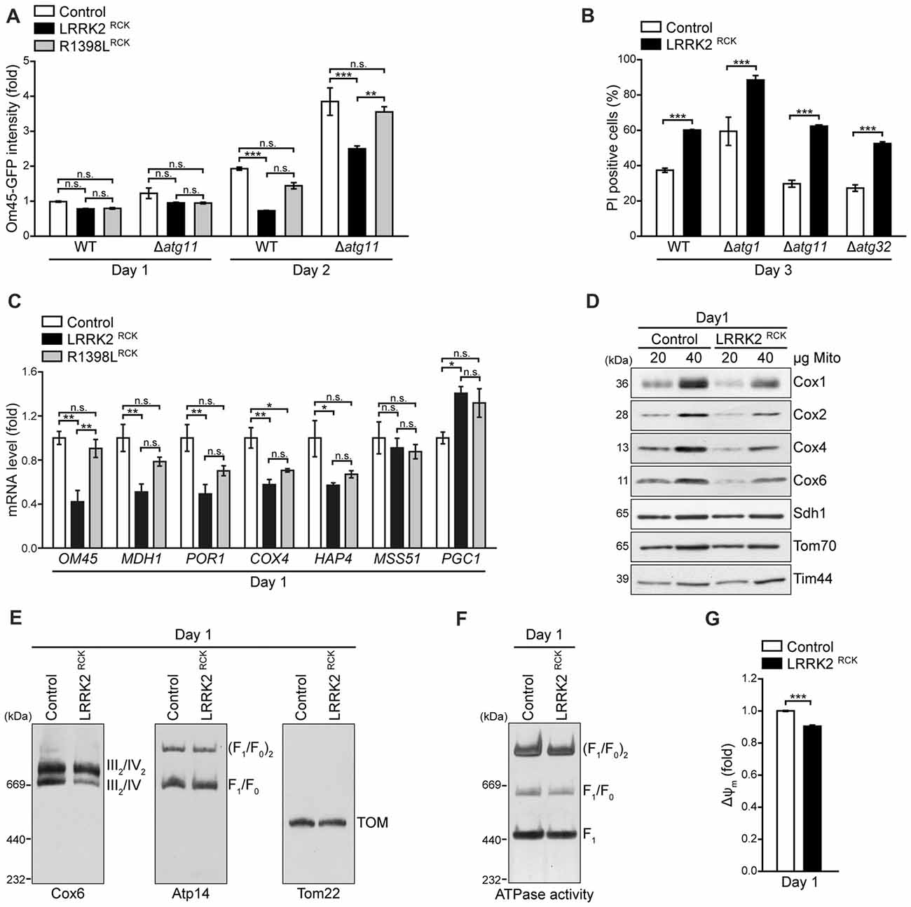 Frontiers The Enzymatic Core Of Parkinsons Disease Associated Spring Buffer Type F 2