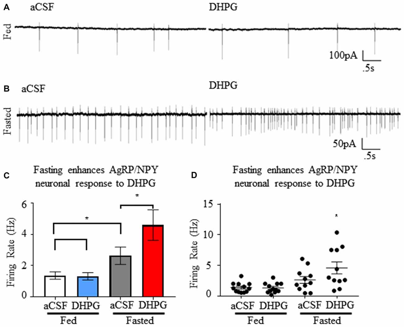 Frontiers | AgRP/NPY Neuron Excitability Is Modulated by