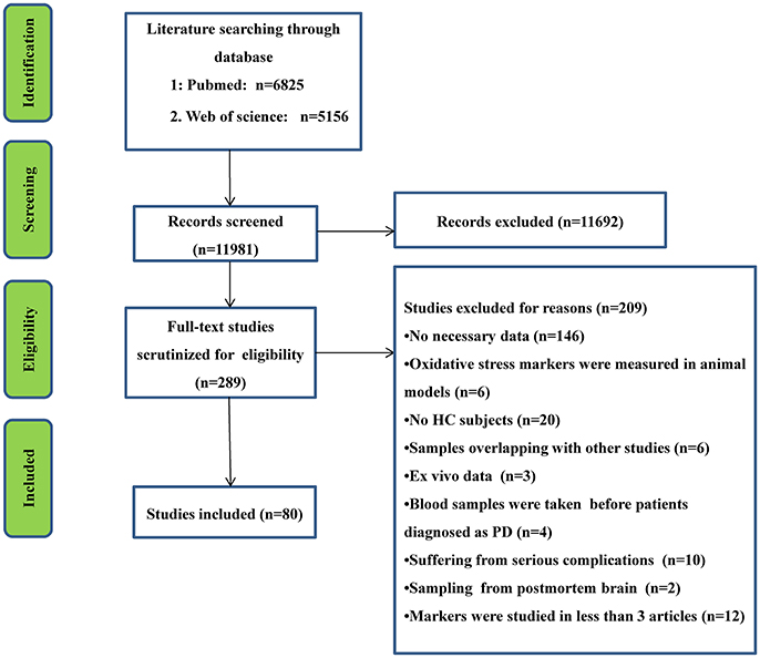 Frontiers | Oxidative Stress in Parkinson's Disease: A
