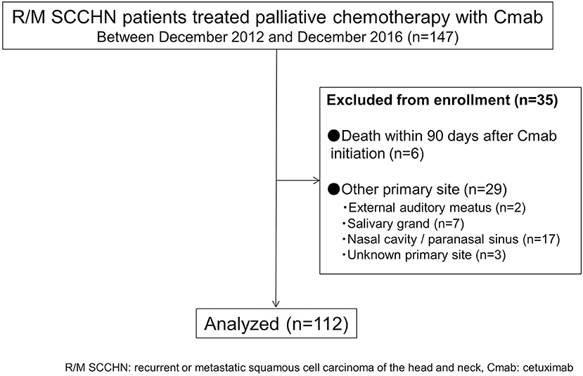 Frontiers   Predictive Value of Cetuximab-Induced Skin Toxicity in