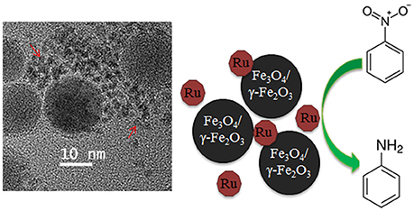 Fe 3 O 4 Au nanoparticleslignin
