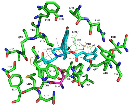 Frontiers | Synthesis, Biological Evaluation, and SAR