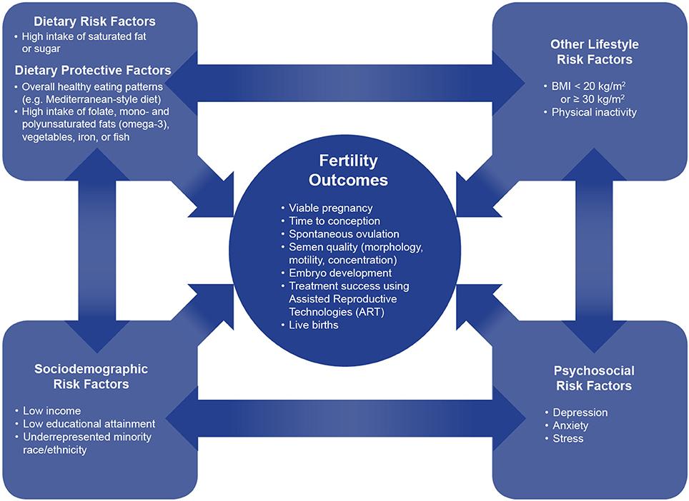 Fertil steril online dating
