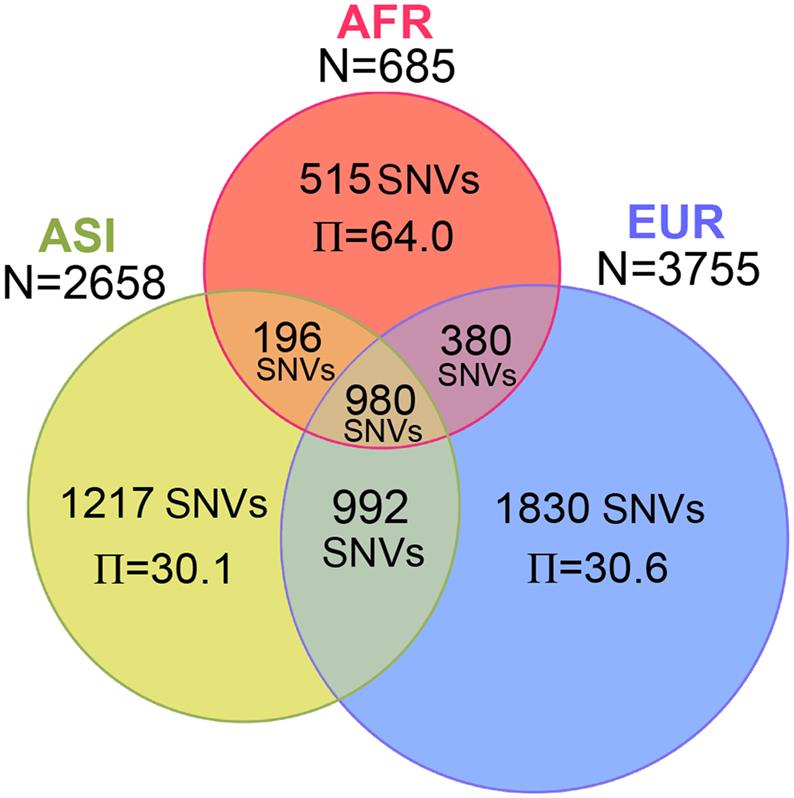 Proportional Venn Diagram R Data Wiring Diagrams
