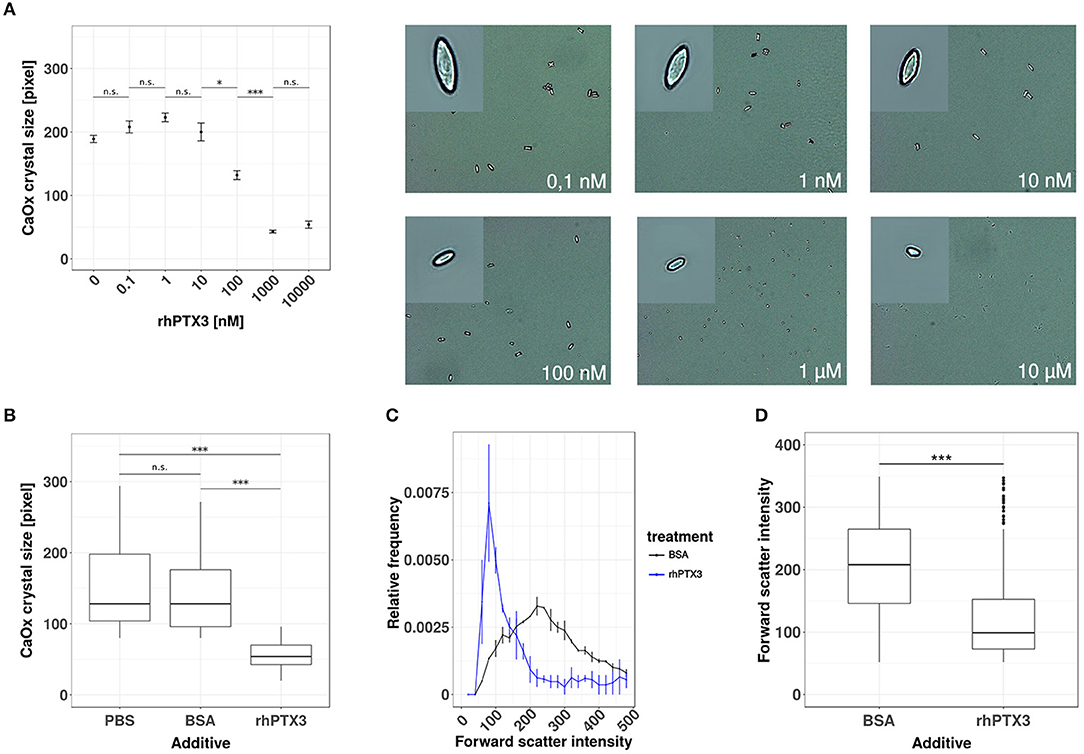 frontiers the long pentraxin ptx3 is an endogenous inhibitor of rh frontiersin org