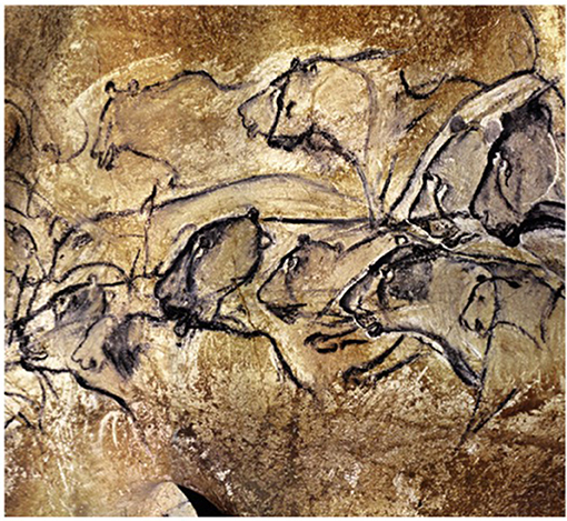 Figure 4 - The lions in the Chauvet cave (−36,000 years).