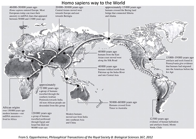Figure 5 - Homo sapiens traveled in the world at various periods as shown on the map.